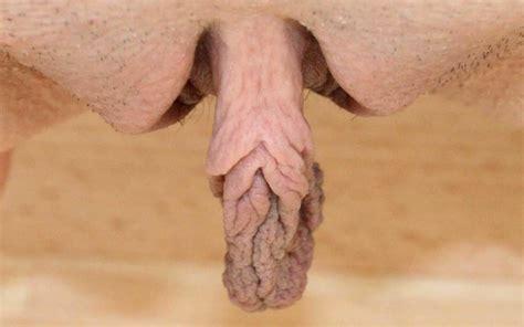 free pic of long pussy lip jpg 1681x1052